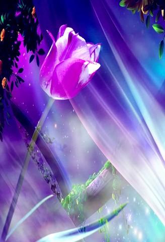 flower image geoff